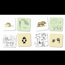 Keskustelukortit - Metsän eläimet