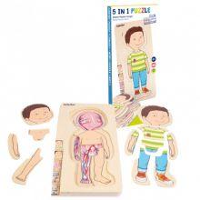 Anatominen palapeli - Pieni poika