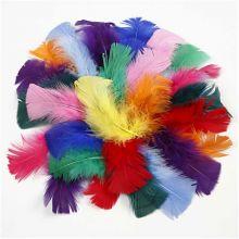 Höyhenet – Eri värejä, 50 g