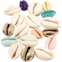 Simpukoita (eri värejä), 75 kpl