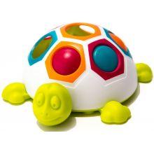Lajitelu kilpikonna perheen pienimmille